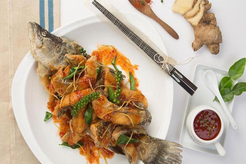 Nấu tiệc đầy tháng trọn gói với các món ngon từ cá chẽm